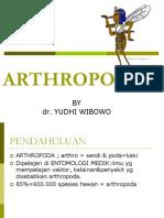 ARTHROPODA 2
