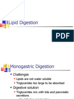 02 Digestion of Lipids