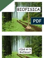 Cinem%E1tica 08 PDF