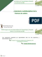 Eficacia Del Tratamiento Multidisciplinar de La Fractura de Cadera. SATO-2009