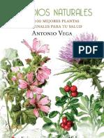 100 mejores plantas