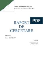 Raport cercetare