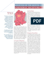 AdrenergicReceptors