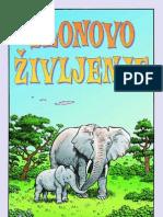 slonovo_zivljenje