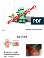 Wondgenezing