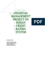 Indian Credit Rating System Final