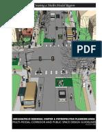 Indianapolis MM Corridor Public Space Design Guidelines