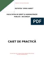 Model de Caiet de Practica ides