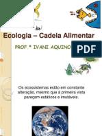 ecologia_Cadeia alimentar