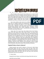 Sejarah Lahirnya Islam Di Indonesia