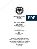 Laporan Praktikum II.3 (Denaturasi Protein)