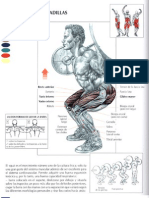 Guia de Los Movimientos de Musculacion - Libro - 111 Pags - Paidotribo