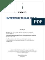 interculturalidad  ENSAYO