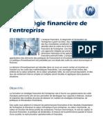 Strtegie financiere