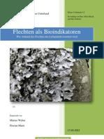 Wissenschaftlicher Text Florian Marius