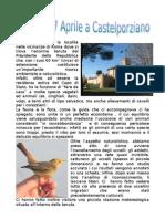 Gita Del 23 Aprile a Castel Porziano