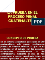 Procesal Penal