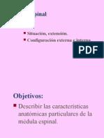 02-Médula espinal (2)