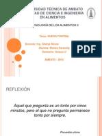 Queso_Fontina