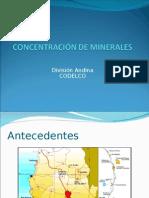 Concentracion Minerales (CODELCO Andina)
