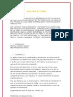 Practica de Forja.doc