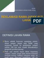Lahan Basah, Definisi Rawa