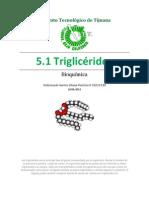 5.1 Triglicéridos