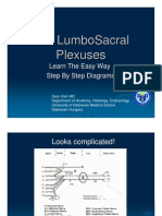 LumbaoSacral Plexuses Learn the Easy Way
