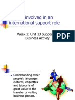 Factors Involved in an International Support Role