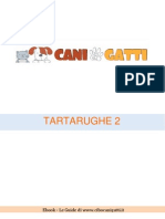 Tartarughe 2