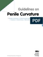 14 Penile Curvature LR II 01