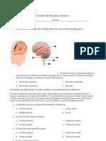 Examen de Sistema Nervioso Central
