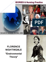 TFN Nursing Theories 2011-2012
