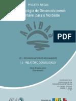 1_0_relatorioconsolidado_heitormatalojunior