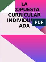 La Propuesta Curricular Individualizada Planeacion