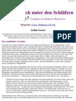Dr. Achim Goeres - Artikel Zu Schuberts Winterreise