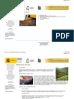 Situaciones Riesgo en La Extincion Incendios Forestales
