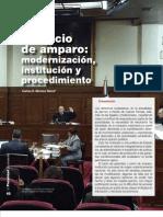 Juicio de Amparo Carlos Montes Nanni