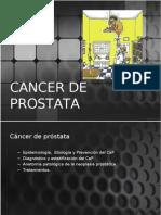 cancerdeprostatacompleta-110809163114-phpapp02