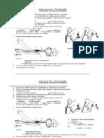 1194460185 Fisiologia Do Sistema Nervoso 1