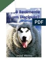 livro_voce_discipulo