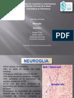 Presentación1NERVISO