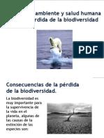 2012-2 Pérdida Biodiversidad 1