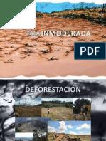 2012-2 TALA INMODERADA