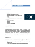 0microbiologia_completo (2)