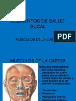 Elementos de Salud Bucal 3