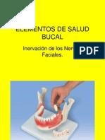 Elementos de Salud Bucal 4