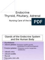 NUR 397 - Endocrine - Pituitary - Adrenal - Thyroid