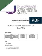 Horticulture-post Harvest Banana