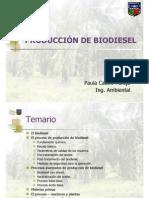 Curso Biodiesel